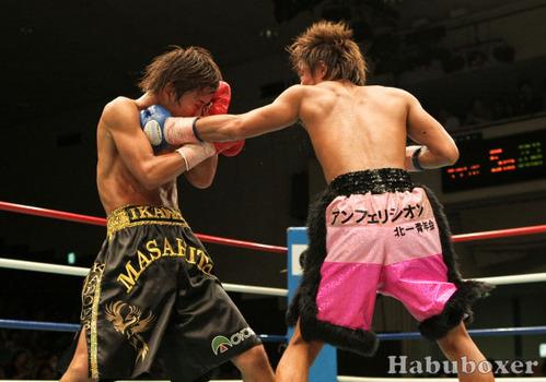 Habu_060