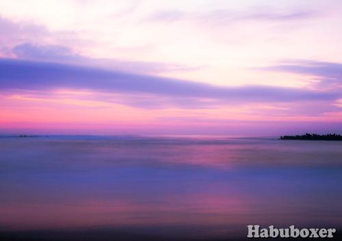 Habu14
